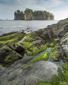Olympic Coast Alex Pullen-3145