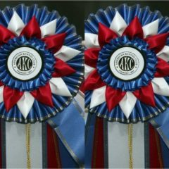 All Breed Dog Show–May 18-19-20-21, 2017!!