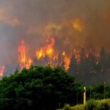 Durango 416 Fire Update – Share Your Story