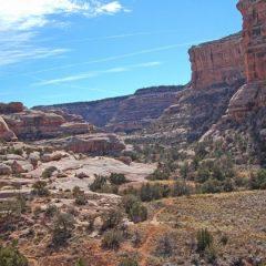 Explore Utah's Canyons