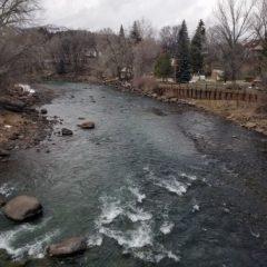 Durango Businesses Reopening