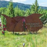 Prime lot at The Meadows at Edgemont Highlands!